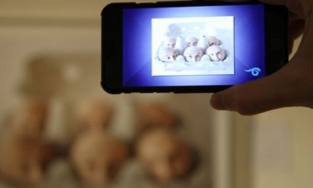 Art Museum of South Texas brings exhibits to life with the help of augmented reality