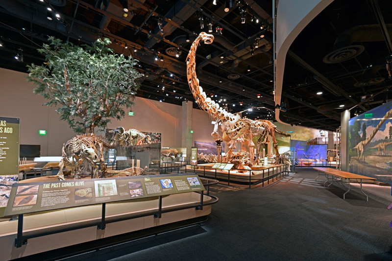 Augmented Reality To Be Part Of Perot Museum Of Nature And Science's Ultimate Dinosaurs Exhibit