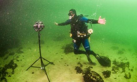 VR Diving in the Baltic Sea – NABU presents OstseeLIFE