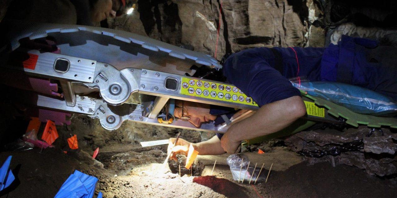 Perot Museum leaders, paleoanthropologist Lee Berger unveil Dinaledi virtual reality app