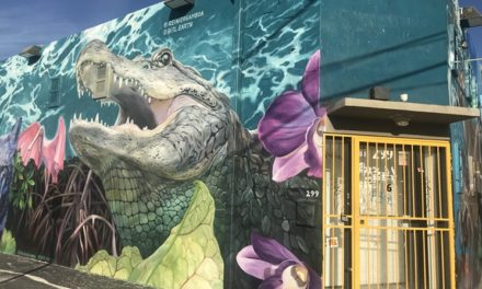 New Wynwood Mural Uses Augmented Reality to Spark Conversation on Climate Change