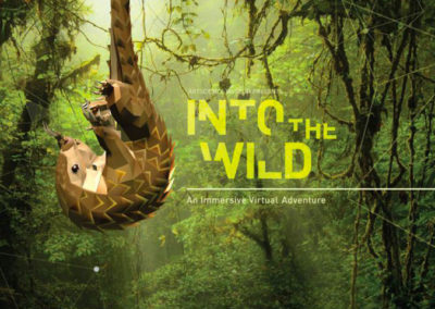 Into the Wild: An Immersive Virtual Adventure